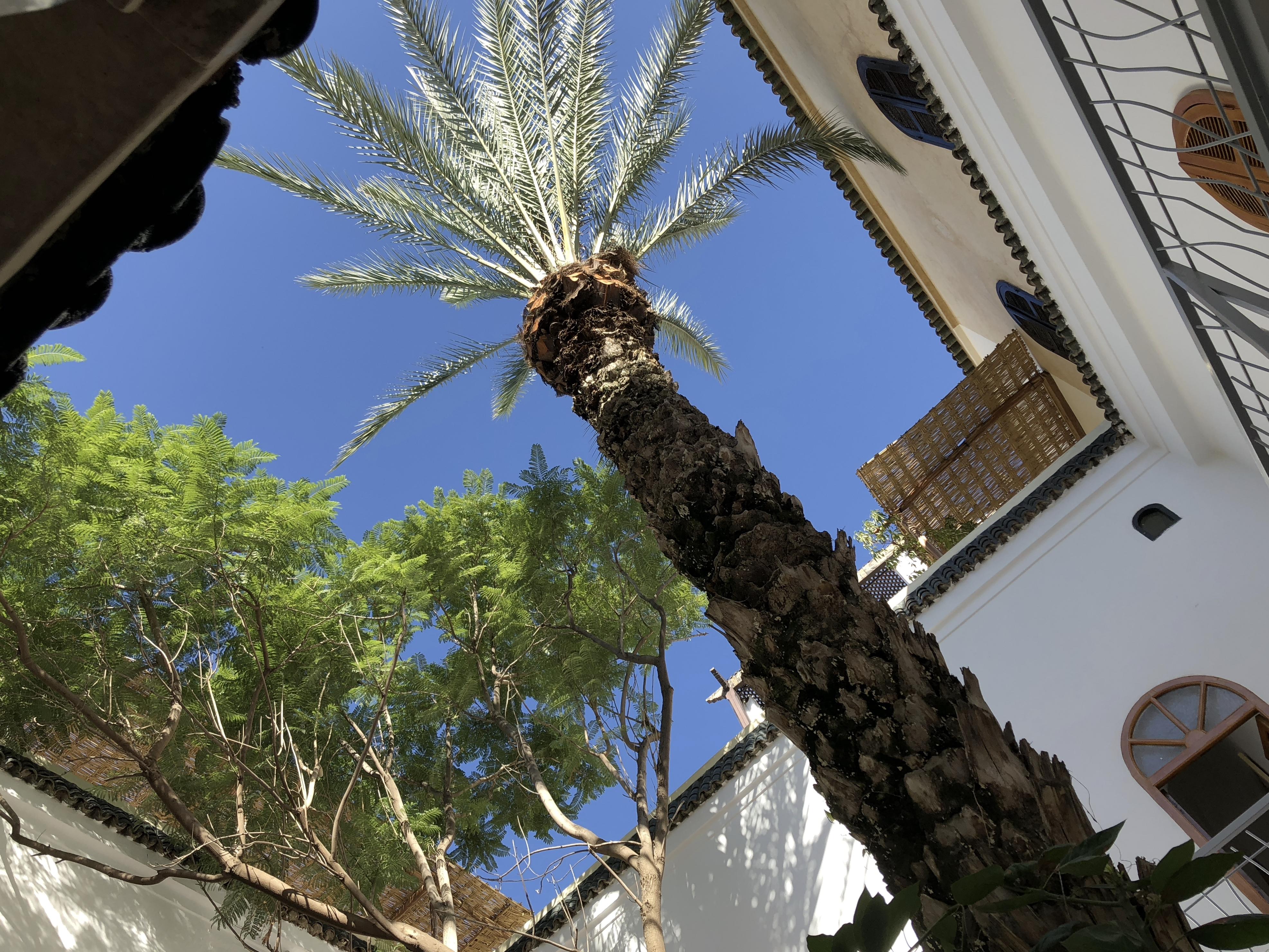Innenhof unseres Riad